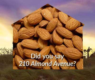 210 Almond Avenue